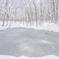 美人林と凍る池