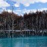 NIKON NIKON D90で撮影した風景(美瑛町 青い沼(氷面編))の写真(画像)