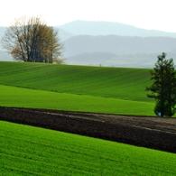 NIKON NIKON D90で撮影した風景(美瑛にて~ 丘の風景)の写真(画像)