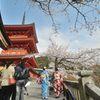 2015年4月 京都・清水寺