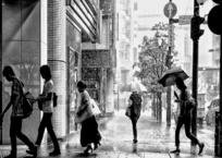雨のきらめき通り