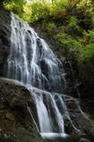 唐沢の滝(上段)
