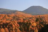 北八ヶ岳の秋模様