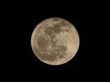 やっとの満月