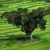 想い出にならないイベリヤ半島の旅 7