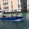 ベネチアの犬
