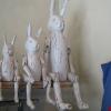 ウサギ3兄弟