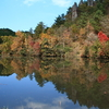 鶴ヶ原の池