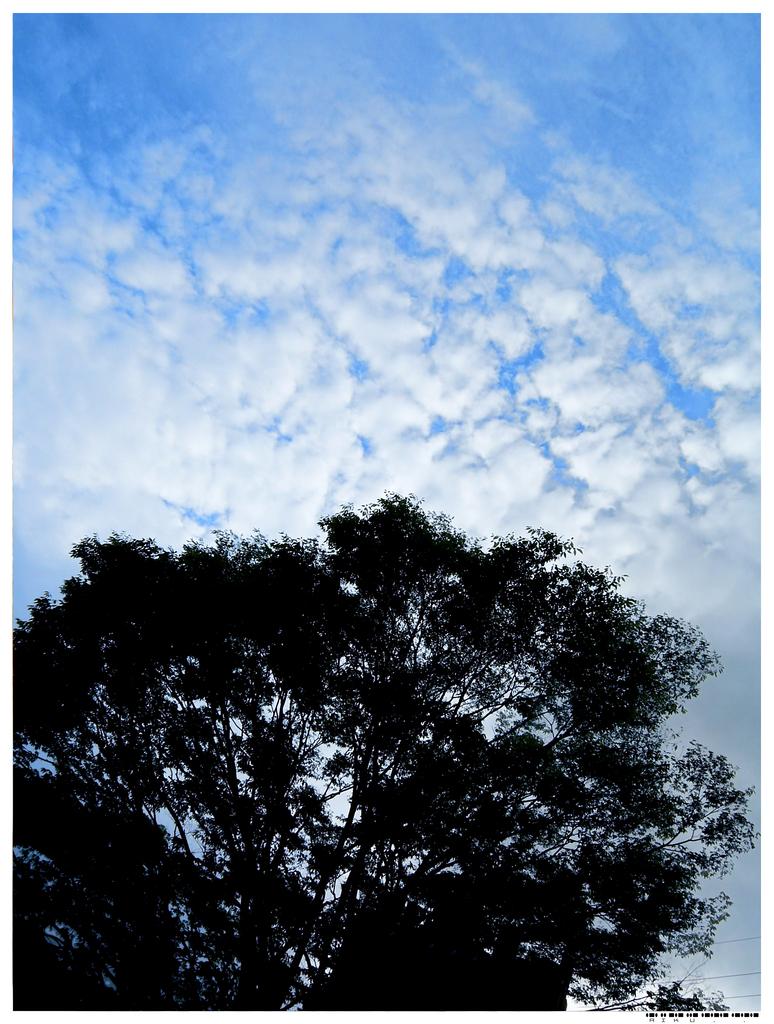 青空の中の不安・・