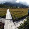 神仙沼の木道 その1
