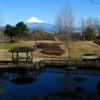 日本平運動公園より2