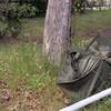 雨上り廃棄された傘