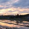 田植え前の夕焼け