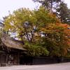 武家屋敷の秋