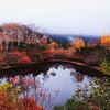 彩りのエゾ沼