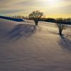 見送る冬陽(ふゆび) 《D800E版》