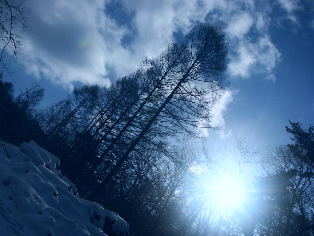冬の青 空・雲  冬の青の写真