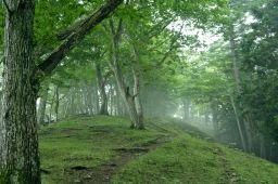 霧の山頂2_256