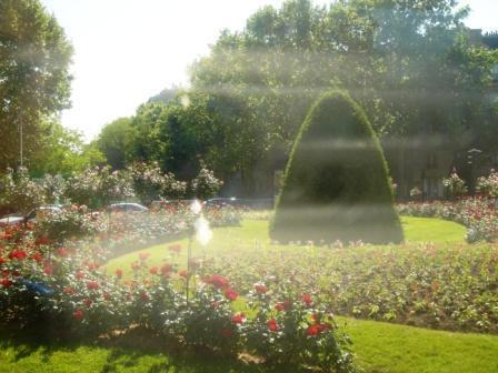 パリの庭。