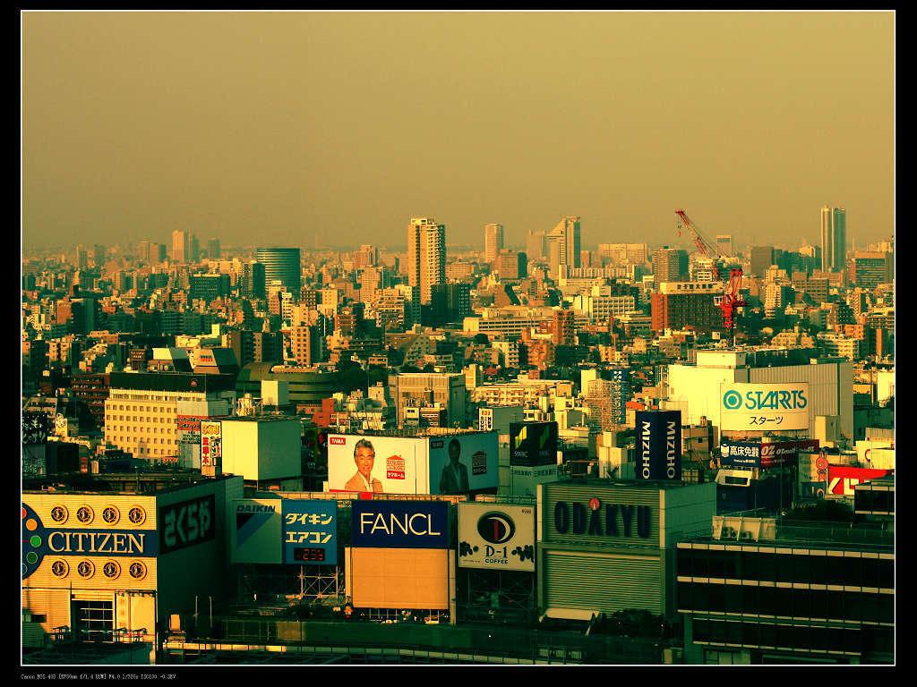 夕方の新宿