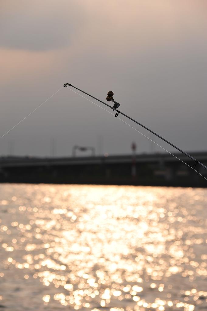 釣れろ~!