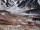初雪の大地