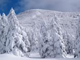 冬の北横岳にて(Scene23/40)
