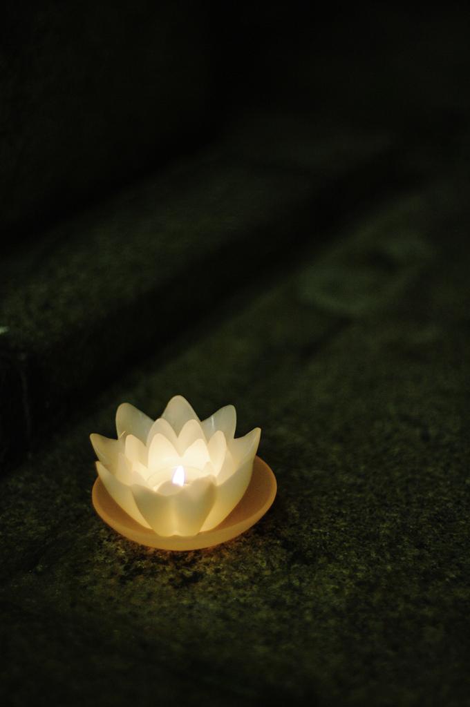 灯火_IMG6312
