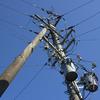 朝の電信柱
