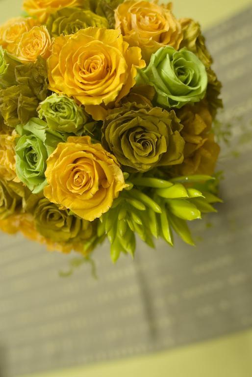 green yellow 3