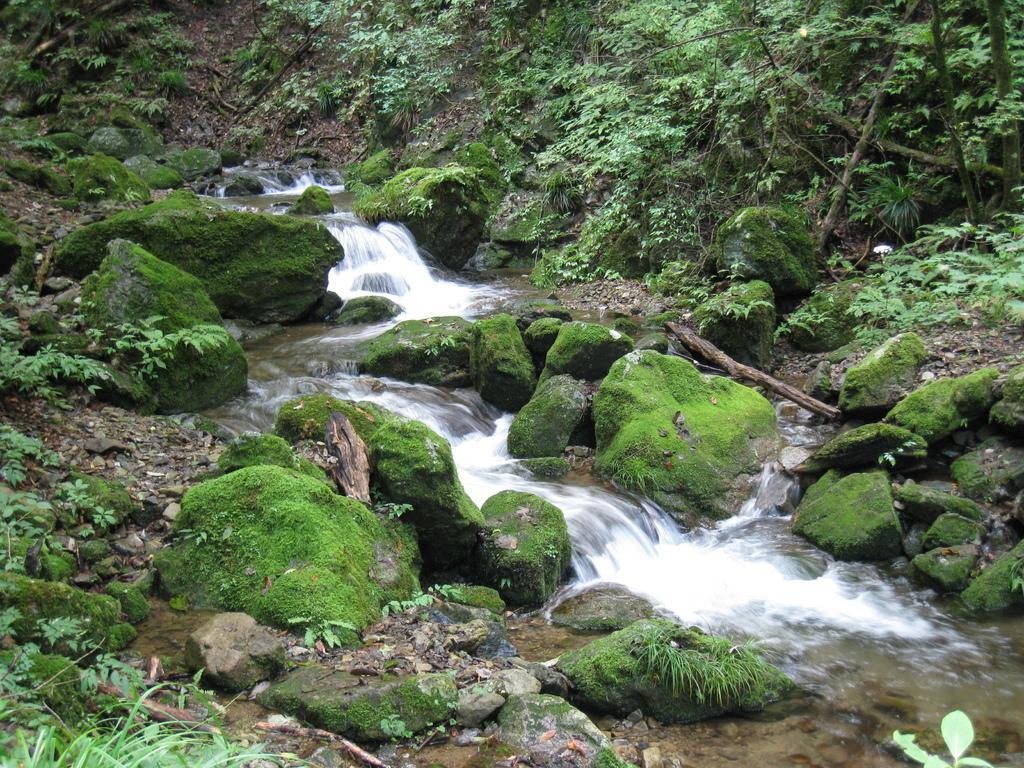 御嶽山 - ロックガーデン