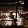 明治神宮の手水舎