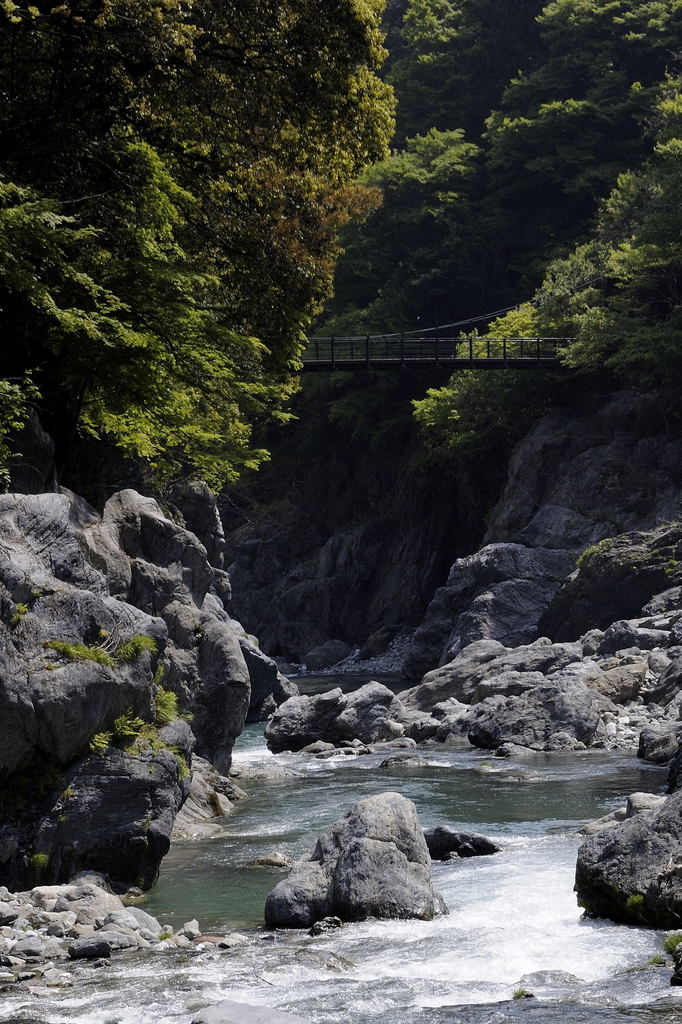 みどりの渓流