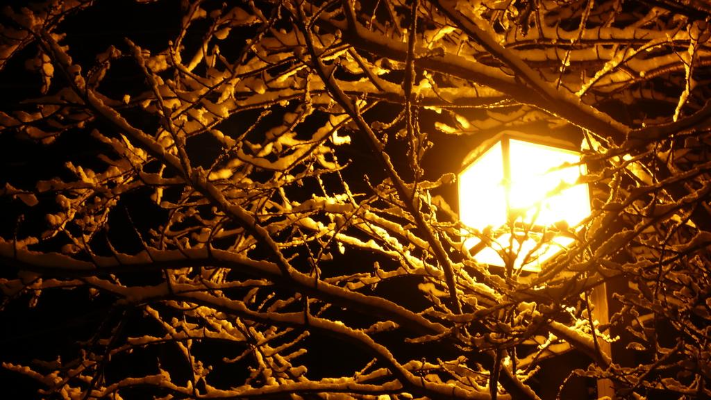 街燈と雪化粧と