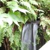 DSC_0396