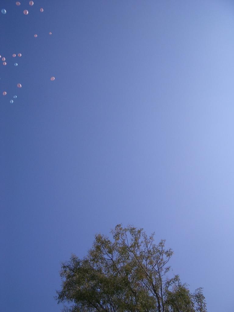 Happy Wedding Ballon1
