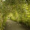 萩トンネル