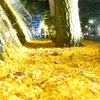 秋、岩手公園
