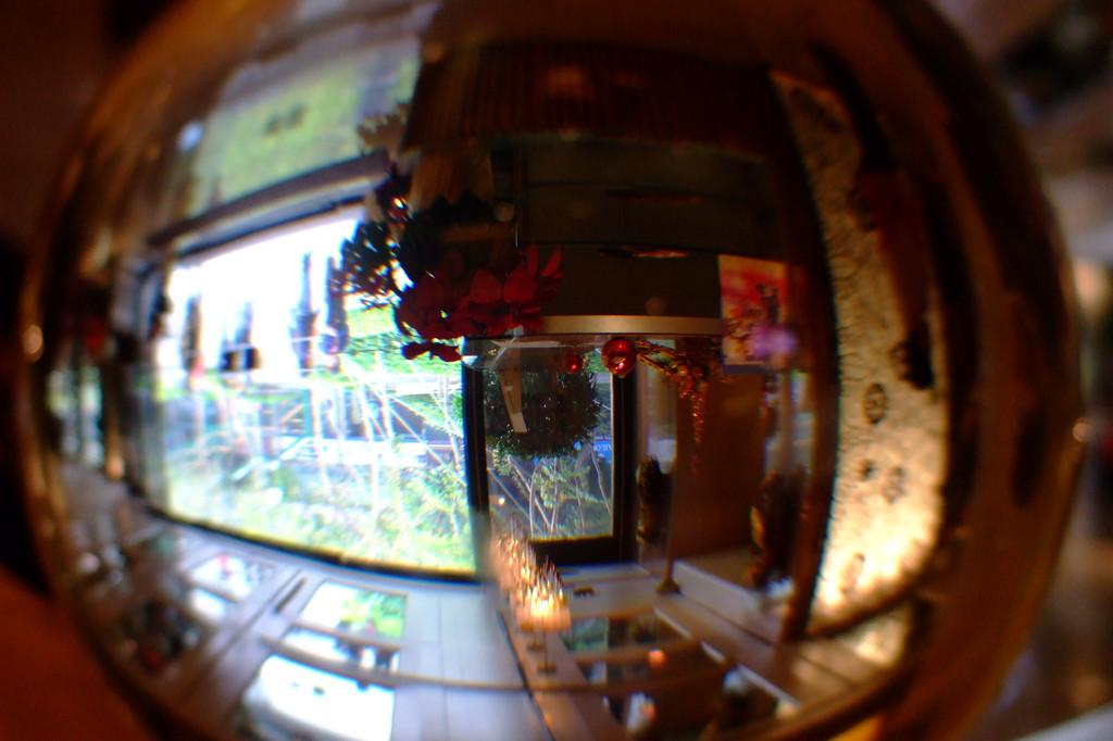 ガラスの中の幻想