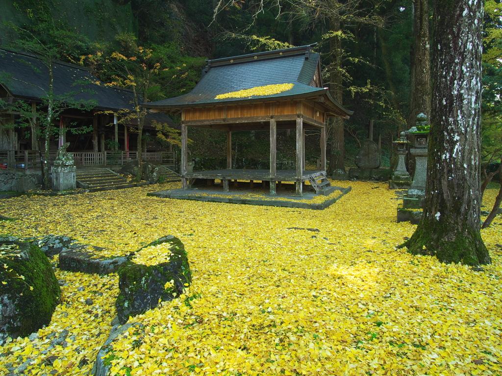 岩戸落葉神社にて