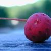 赤いサッカーボール
