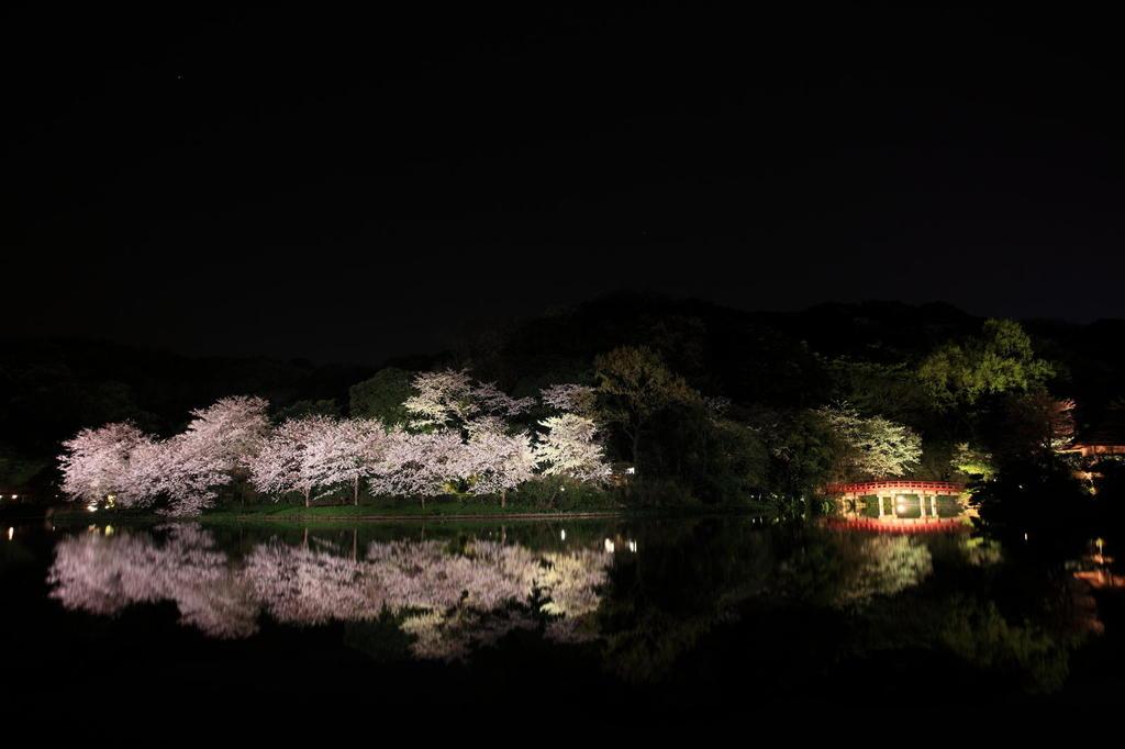三渓園2009(4)