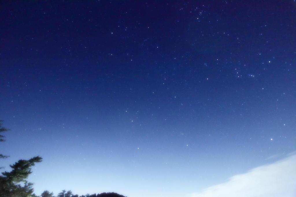 流れ星を観たくて・・・