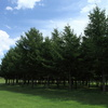 モエレ沼公園2