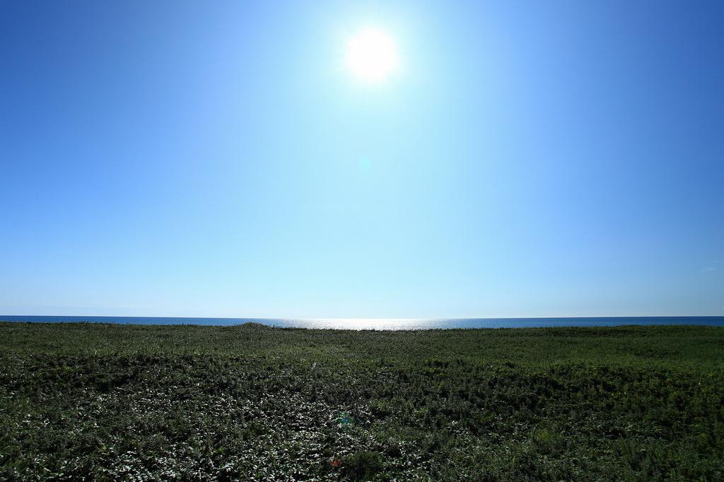 サロベツ原野11