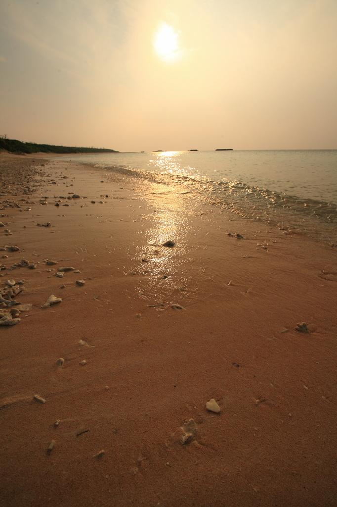 物寂しげな海岸