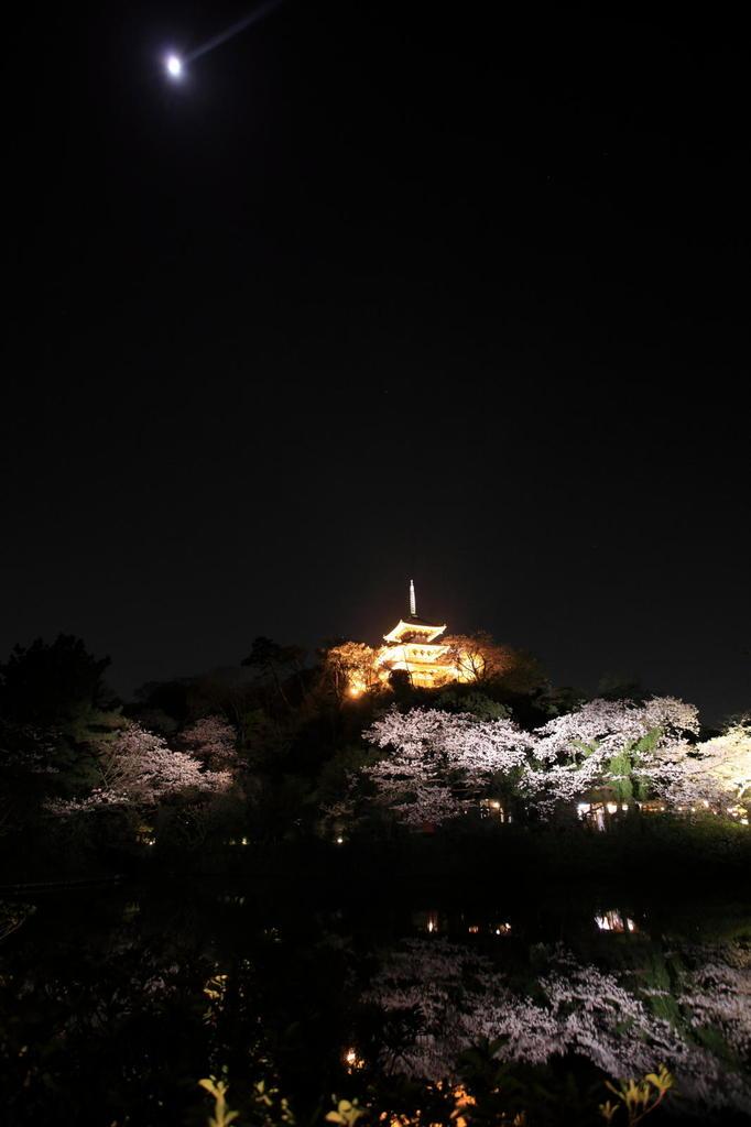 三渓園2009(2)