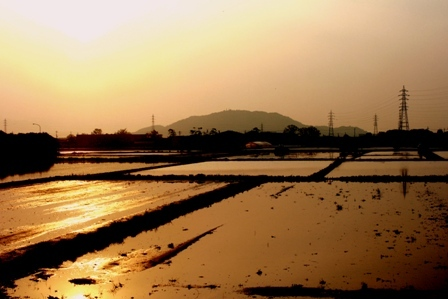 近江鉄道から夕焼け