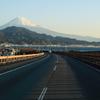 由比からの富士