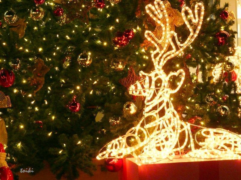 クリスマスの乗り物